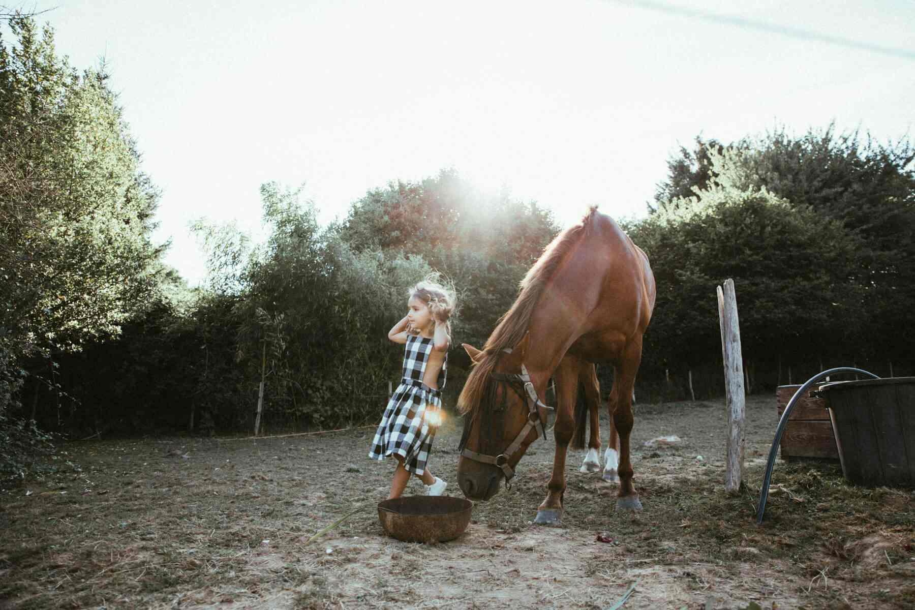 ecolodge bretagne cheval enfant