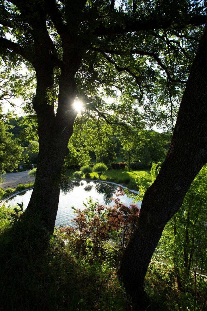nature luberon riviere