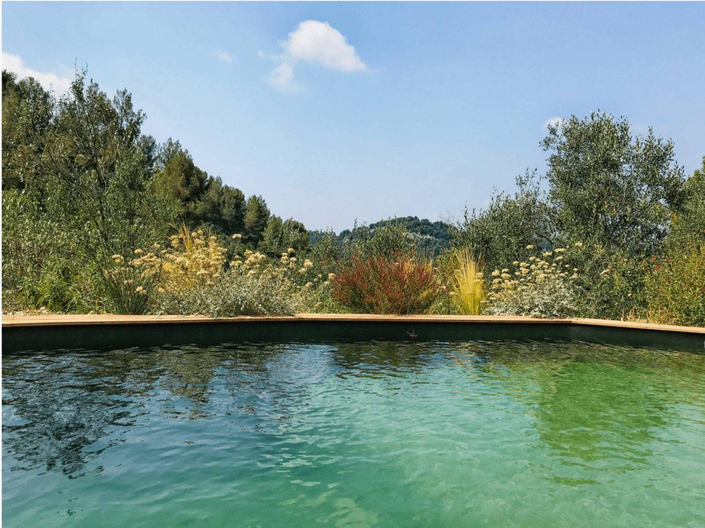 casa sallusti piscine naturelle